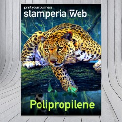 Poster in Polipropilene